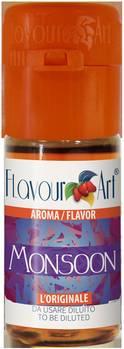 flacon d'arôme Monsoon Flavour Art pour pratique Do It Yourself